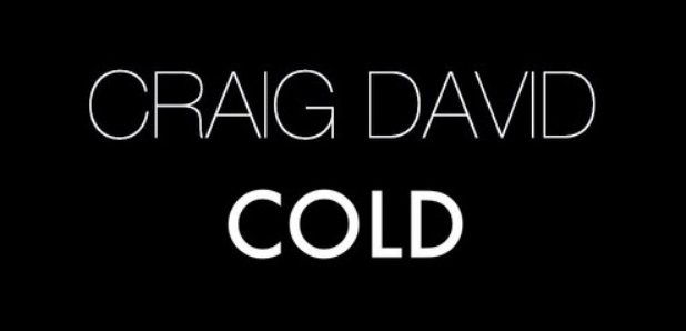 Craig David 'Cold' Artwork