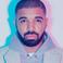 Image 2: Drake beard